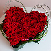 An arrangement on a floral foam of 25 claret roses. Price: 102 USD