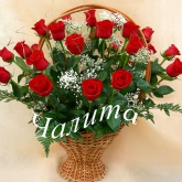 A gift basket of 29 claret roses, baby's breath and greenery. Price: 117 USD