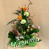 A circle-view arrangement of roses, carnation, alstroemeria callas and other flowers Price: 68 USD