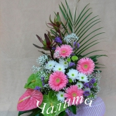 An arrangement on a floral foam of anthuriums, gerbera diasies and other flowers.  Price: 51 USD