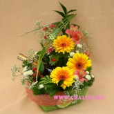 An arrangement on a floral foam in a basket  Price: 54 USD