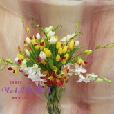 A bouquet of tulips, orchids dendrobium and freesia. Price: 77 USD