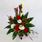 Bouquet of roses, callas, leukodendronov, Hypericum and decorative greenery.Price: 58 USD