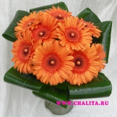 A bouquet of gerbera diasies and aspidistra. Price: 41 USD